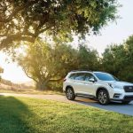 Large SUV, 2019 Subaru Ascent First Drive:  Scoop!